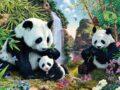 Тест: Какое количество панд на изображении, подскажет ваш интеллект и правильно поставленное мышление.
