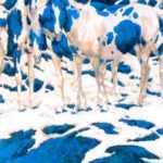 Сколько лошадей вы видите на этой картинке, ответ покажет что-то скрытое в вашей личности.